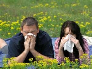 Hablemos sobre las alergias