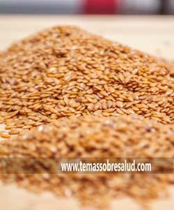 grasas - semillas de linaza