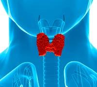 Tiroides hipoactiva