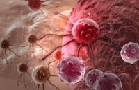 Cáncer de hígado toxinas