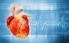 zinc para la salud del corazón