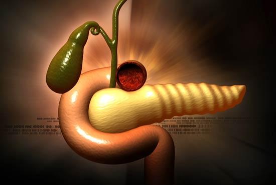 cáncer de páncreas órgano