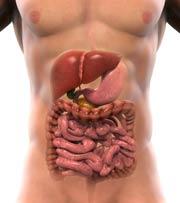 Cáncer de hígado cirrosis