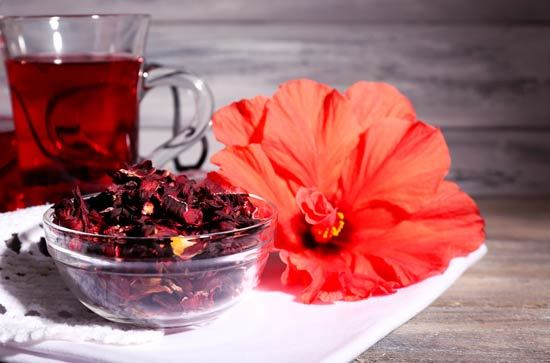 Absorción De Medicamentos De La Tiroides - cafeína