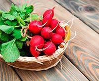 Hipotiroidismo y verduras crucíferas - yodo