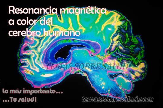 ¿Cómo afecta la permeabilidad intestinal al eje cerebro – intestino? - depresión