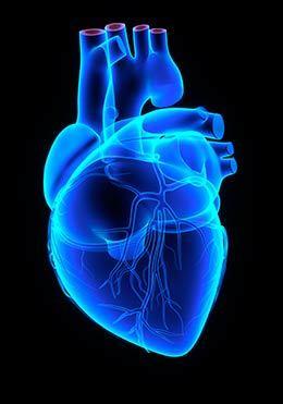 problemas en el corazón