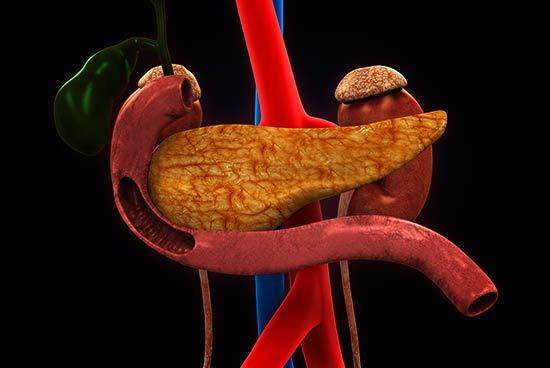 ¿Cuales son las funciones del páncreas? enzimas