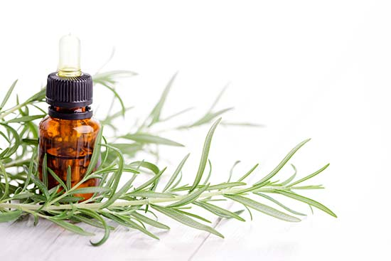 El aceite esencial de romero reduce el nivel del cortisol