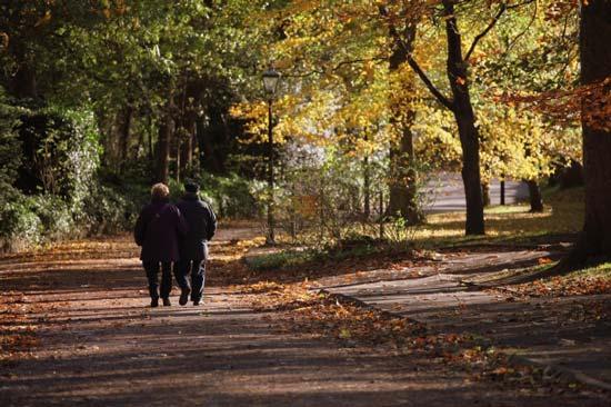 síntomas de la enfermedad de Alzheimer - Alejarse de la vida social