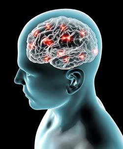¿El Alzheimer es una enfermedad que se puede prevenir?