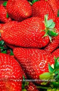 10 Alimentos que previenen la inflamación en el cuerpo