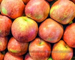 Las fresas son de las mejores frutas para diabéticos
