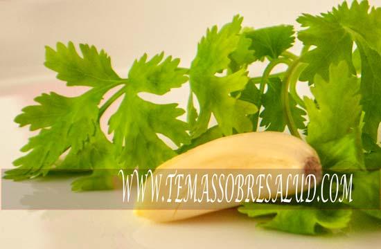 el cilantro y sus beneficios para la salud