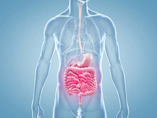 Remedios caseros naturales para la acidez estomacal
