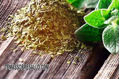 Las ocho mejores aplicaciones del aceite de orégano