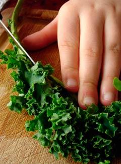 verduras crucíferas brócoli