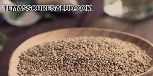 Quinoa - Bajo índice glicémico