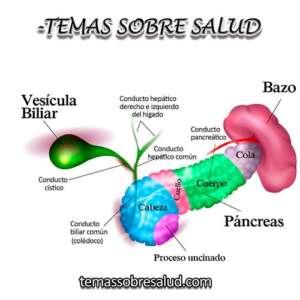 Síntomas comunes de un ataque de vesícula biliar