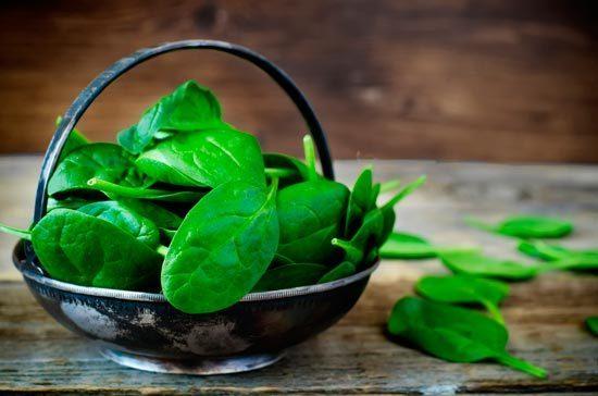 Verduras de hojas verdes oscuras