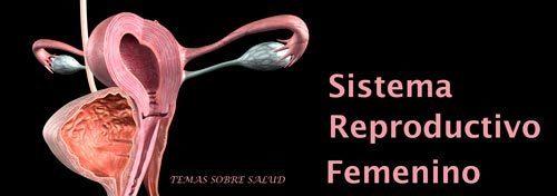 Infertilidad inexplicada y Mucosa Cervical