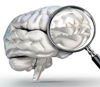 ¿Cómo afecta la permeabilidad intestinal al eje cerebro – intestino? - Ansiedad
