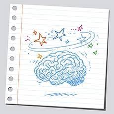 Cerebro saludable