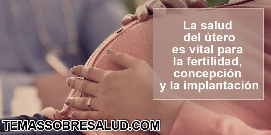 Fase lútea - Cuando el cuerpo no produce suficiente progesterona, puede que la fase lútea termine de forma prematura.