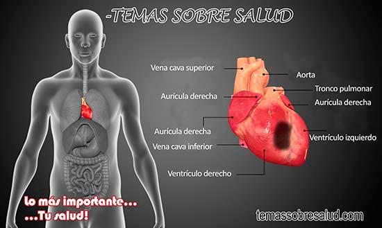 Trigliceridos - colesterol elevado