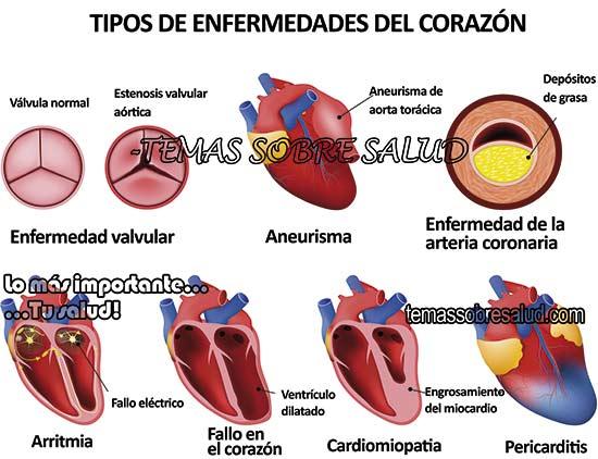 enfermedad tiroidea - anacardos fortalecen el estado emocional y reducen el estrés