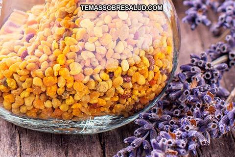 El polen de las abejas se puede considera como proteína pura