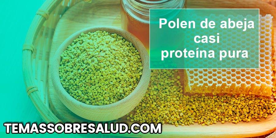 El polen de abeja es casi es proteína pura