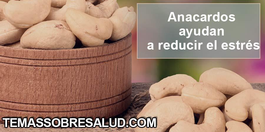 Consumir frutos secos fortalece el estado emocional