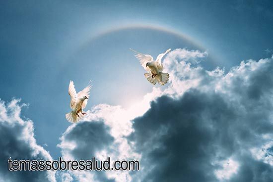 El ángel de la guarda se puede manifestar en sueños