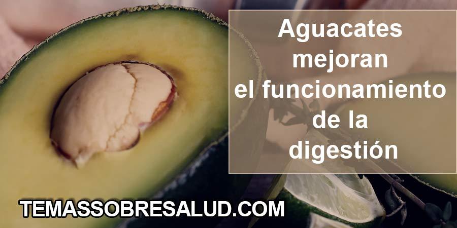 Comer Aguacates fortalece la salud del corazón