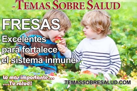 vitamina C Hierbas los mejores aliados para el balance hormonal