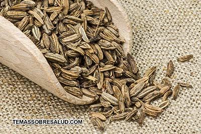 Semillas de hinojo para prevenir la flatulencia y los retortijones estomacales