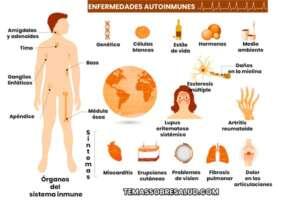 Enfermedades autoinmunes – ¿Cómo se desarrolla la inmunidad?