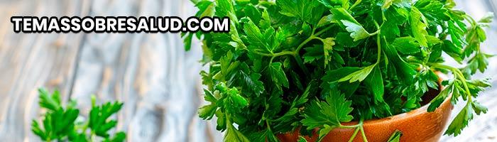 Diuréticos naturales - Perejil usadas durante miles de años como remedio tradicional para la retención de líquidos