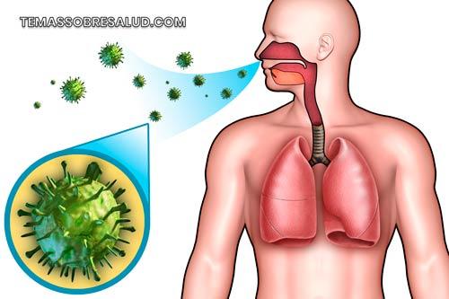 Asma bronquial – La manifestación más dura y grave de la alergia al polvo doméstico