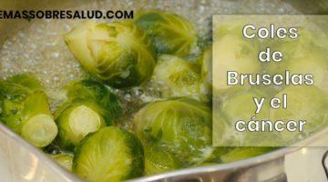 Beneficios de las coles de Bruselas para la salud
