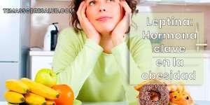 La resistencia a la leptina es quizás la causa principal de la obesidad