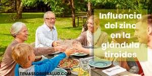 Efectos del déficit de zinc en la glándula tiroides {Recupera los niveles de las hormonas tiroideas}