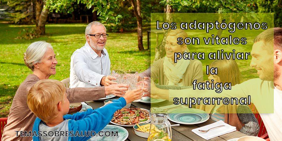 Agotamiento suprarrenal -  los adaptógenos pueden nutrir y fortalecer las glándulas suprarrenales