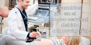 Síntomas de la ovulación – Dolor de medio ciclo menstrual y la importancia de la consistencia del flujo o mucosa cervical