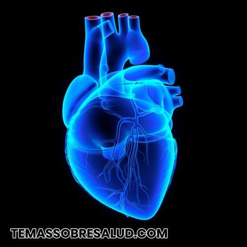 Miocarditis infecciosa