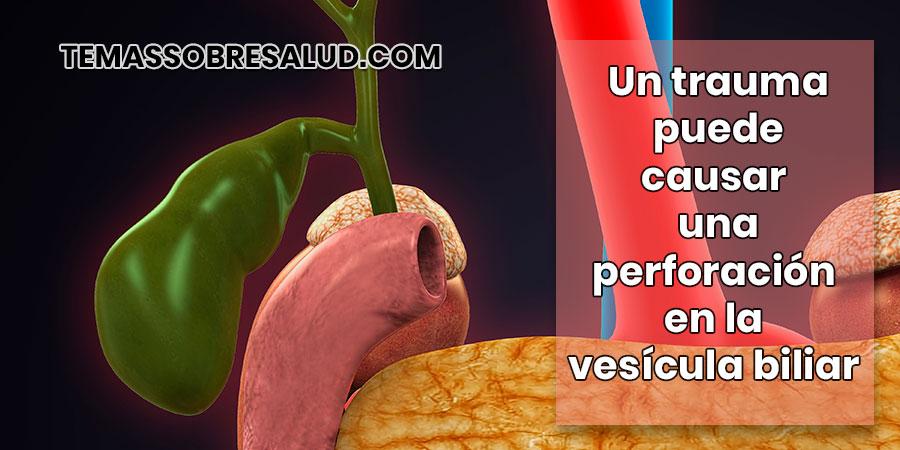 Estasis biliar y ruptura de la vesícula biliar