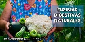 Recuperar las enzimas digestivas