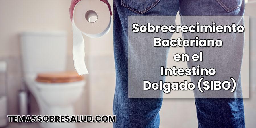 Sobrecrecimiento bacteriano en el intestino delgado - antibióticos