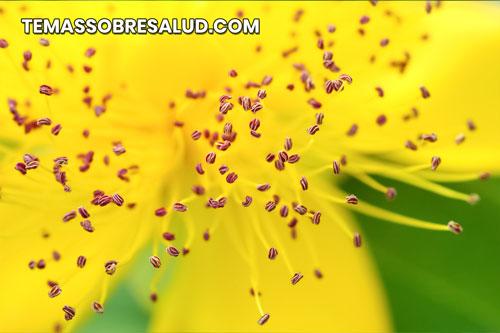 polen en el aire